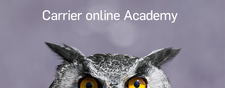 Carrier Online Academy